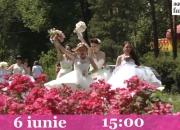 Parada Mireselor 2015 promo - 22/05/2015