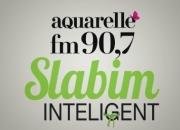 Slabim Inteligent - 2016 - 11/11/2016