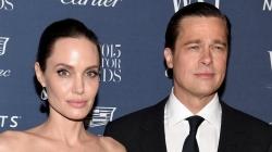 Брэд Питт и Анджелина Джоли будут работать вместе
