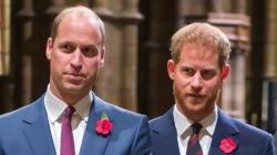 Принц Гарри помирился с братом после нескольких месяцев ссоры